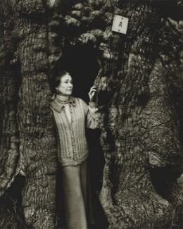 Marjorie Olein ('Mollie'), Marchioness of Salisbury, by Tessa Traeger - NPG P1026(39)