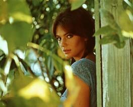 Jacqueline Bisset, by Unknown photographer - NPG x126897