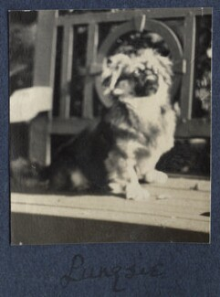 'Pungsie', by Lady Ottoline Morrell - NPG Ax141533