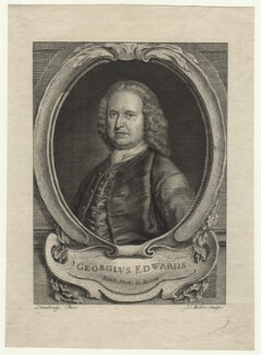 George Edwards, by John Sebastian Miller (formerly Johann Sebastian Müller), after  Bartholomew Dandridge - NPG D20975