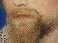 Where the beard is thin on the chin the artis…