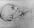 William Ewart Gladstone, by Sir William Blake Richmond - NPG 3319