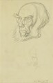 Sir Joseph Dalton Hooker, by Sir William Rothenstein - NPG 4199
