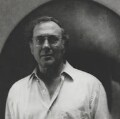 Harold Pinter, by Barry Ryan - NPG P584