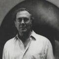 Harold Pinter, by Barry Ryan - NPG P584