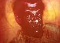 Derek Walcott ('The Sun Poet'), by Ross Wilson - NPG 6400