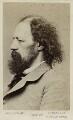 Alfred, Lord Tennyson, by Elliott & Fry - NPG Ax17800