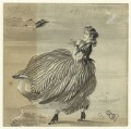 Sketch of an unknown woman blown by wind, by George Estall - NPG D23204