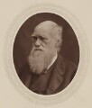 Charles Darwin, by Lock & Whitfield, published by  Sampson Low, Marston, Searle and Rivington - NPG Ax17583
