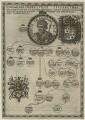 GENEALOGIA HENRICI VII ET ELIZABETHAE, after Unknown artist - NPG D23856