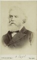 Sir Austen Henry Layard, by London Stereoscopic & Photographic Company - NPG x38983