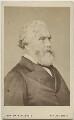 Sir Austen Henry Layard, by John Watkins, or by  John & Charles Watkins - NPG Ax46275