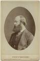 Robert Gascoyne-Cecil, 3rd Marquess of Salisbury, by London Stereoscopic & Photographic Company - NPG x6853