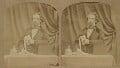 Charles Dickens, by (George) Herbert Watkins - NPG x5585