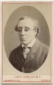 Henry Fawcett, by London Stereoscopic & Photographic Company - NPG Ax28468