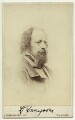 Alfred, Lord Tennyson, by London Stereoscopic & Photographic Company - NPG Ax39844