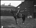 Frederick Sleigh Roberts, 1st Earl Roberts, by Mrs Albert Broom (Christina Livingston) - NPG x174