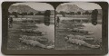 'The perils of photography - our artist, H.G. Ponting, F.R.G.S. photographing alligators at short range on the edge of an Indian Lake', by H.C. White Co - NPG x26077