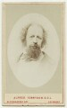 Alfred, Lord Tennyson, by London Stereoscopic & Photographic Company - NPG x26794