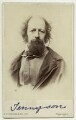 Alfred, Lord Tennyson, by London Stereoscopic & Photographic Company - NPG x26795
