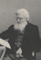 Alfred Russel Wallace, by Miss Chant - NPG x5114
