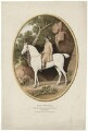 Josiah Wedgwood, after George Stubbs - NPG D37631