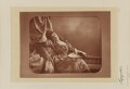 May Fortescue (née Finney), by Lafayette (Lafayette Ltd), published by  Eglington & Co - NPG Ax5516