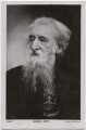 William Booth, possibly by Ernest Herbert ('E.H.') Mills, published by  Rotary Photographic Co Ltd - NPG x136276