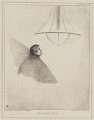 The Great Moth (Sir Frederick William Trench), by John ('HB') Doyle, printed by  Alfred Ducôte, published by  Thomas McLean - NPG D41579