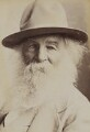 Walt Whitman, by Napoleon Sarony - NPG P1700(10b)