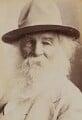 Walt Whitman, by Napoleon Sarony - NPG P1700(10b)