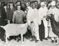Mahatma Gandhi, by Keystone Press Agency Ltd - NPG x137613
