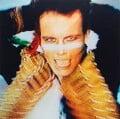 Adam Ant (Stuart Leslie Goddard), by Peter Ashworth - NPG x199195