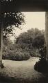 Frederick Delius's garden, by Elsie Gordon - NPG x196219