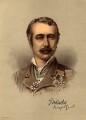 Garnet Joseph Wolseley, 1st Viscount Wolseley, after Unknown photographer - NPG D11033