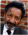 V.S. Naipaul, by David Harrison - NPG x76055