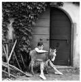 Audrey Hepburn, by Norman Parkinson - NPG x30114