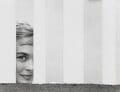 Shirley Eaton, by Bob Collins - NPG x35149