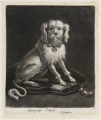 Lapdog, published by John Smith, after  Abraham Danielzsoon Hondius (de Hont or de Hond) - NPG D11843