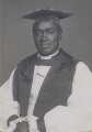 Adolphus Williamson Howells