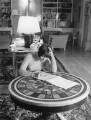 Dame Mary Quant, by Baron Studios - NPG x125390