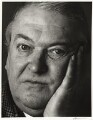 Kingsley Amis, by Trevor Leighton - NPG x30331