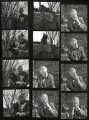 Reginald Arkell, by John Gay - NPG x126612