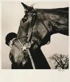 Ian David Stark, by Alistair Morrison - NPG x77031