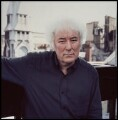 Seamus Heaney, by Mark Gerson - NPG x76834