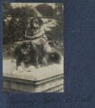 'Darling Soie and Nutt' (Lady Ottoline Morrell's dogs), by Lady Ottoline Morrell - NPG Ax141264